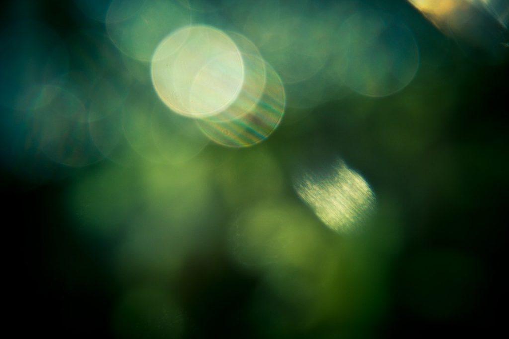 bokeh, effet, vert